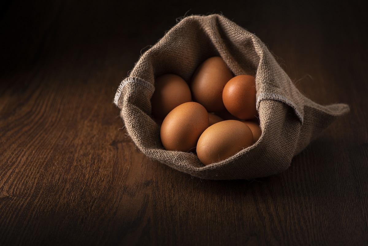 ovos ajudam a fortalecer e desenvolver os músculos